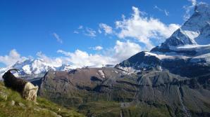 Evening walk back to Zermatt